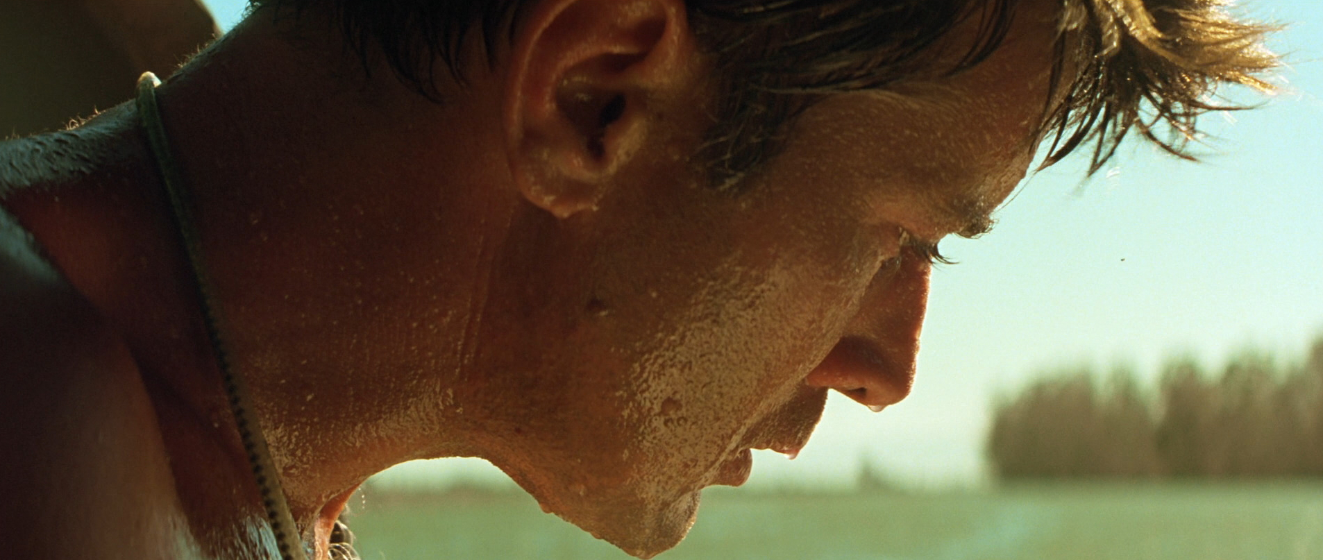 anything you build on a large scale or intense passion apocalypse now as a theatrical occurance is something of a unique event in the context of the modern cinema experience it ought to go out saying